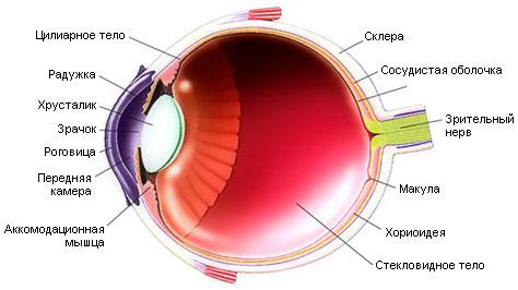 Померить глазное давление цена
