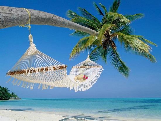 Едете в отпуск? Советы медиков