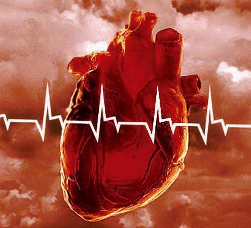 Генетика в помощь кардиологам