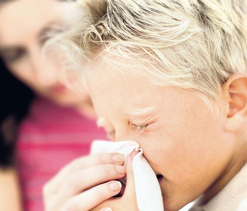 Прополис от простуды