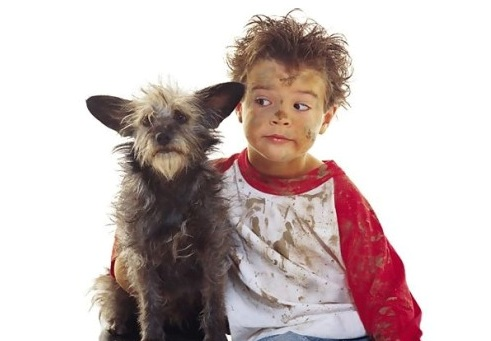 Собаки лечат детей