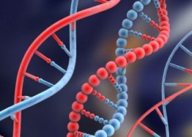 Генную терапию против ВИЧ признали безопасной