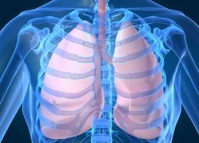 Ключевая молекула возбудителя туберкулеза