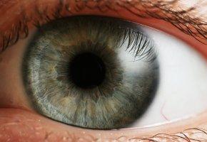 Неделя борьбы с глаукомой