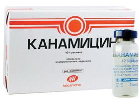 канамицин глазные капли инструкция цена