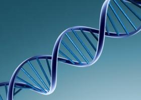 Ученые приблизились к открытию лекарства от рака