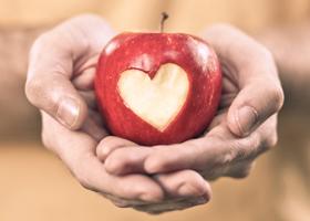 Сердце мертвого донора теперь можно трансплантировать