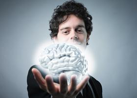Мозг древнего человека развивался благодаря углеводной пище