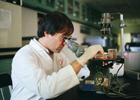 Ученые обнаружили «гены смерти»
