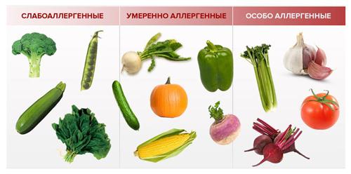 Степень аллергенности овощей