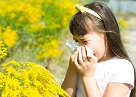 аллерго таблетки от аллергии цена
