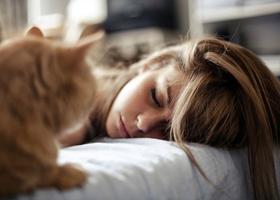 Длительная дремота увеличивает вероятность сахарного диабета