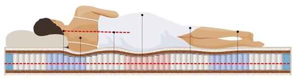 Правильное положение тела для здорового сна