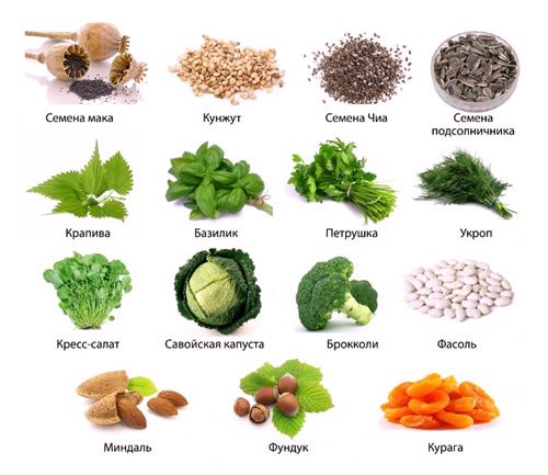 Продукты с большим содержанием кальция - наиболее полезные для кормящей матери