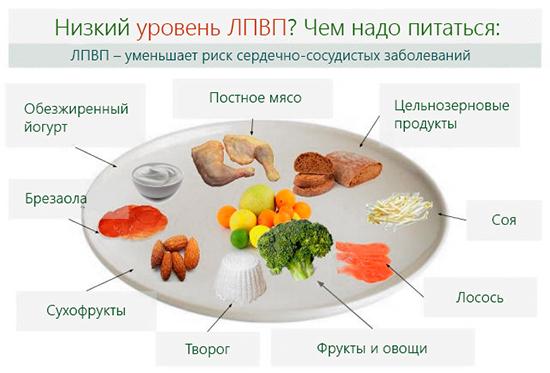 Правильное питание при низком уровне ЛПВП