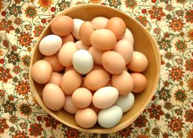 Вареные яйца - главный продукт Химической диеты