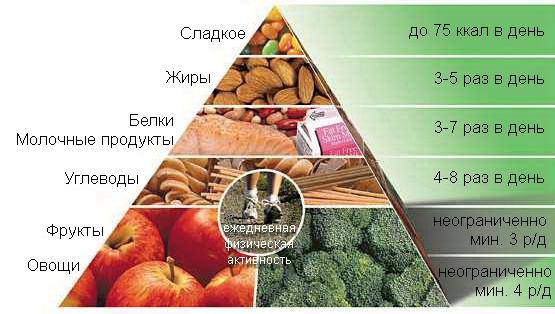 Пищевая пирамида здорового веса клиники Майо
