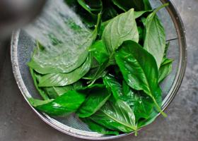 Листовые овощи приостанавливают старение мозга