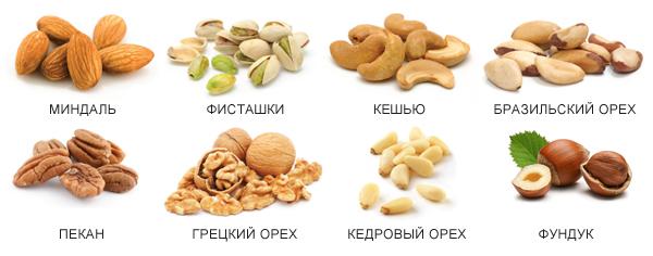 Самые распространенные виды орехов