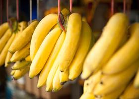 Ученые рекомендуют завтракать бананами