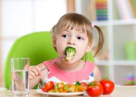 Питание детей дошкольного возраста