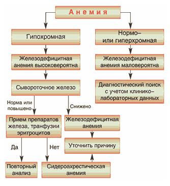 Классификация анемии по цветовому показателю