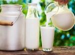 Разгрузочный день на молоке