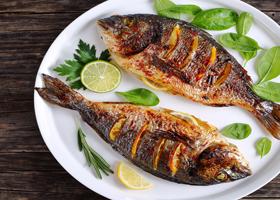 Рыба замедляет процессы старения мозга