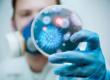Ученые обсуждают роль коллективного иммунитета в борьбе с коронавирусом