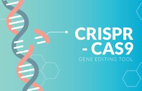 Система CRISPR