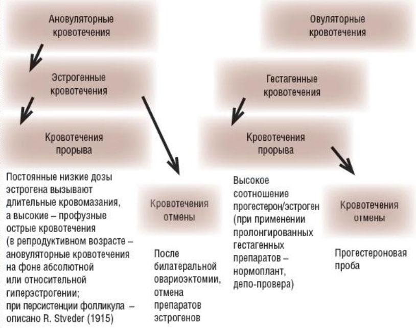 Метроррагия (маточное кровотечение)