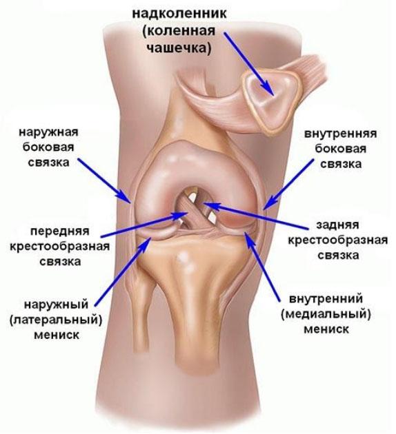 Растяжение связок и мышц