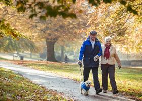 Активная ходьба продлевает жизнь